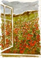 gabys_palette_gabriele_schech_music_makes_pictures_homegrown_tomatoes_47c16088329f6