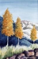 gabys_palette_gabriele_schech_music_makes_pictures_plant_a_tree__47c1c8c640bf6