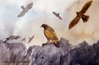 gabys_palette_gabriele_schech_music_makes_pictures_the_eagle_and_the_hawk__477f921a9ab2d